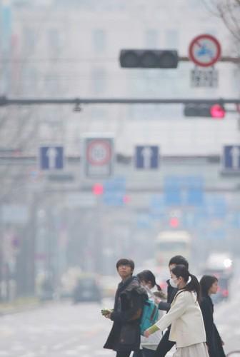 御堂筋 2014年2月26日午後1時5分.jpg